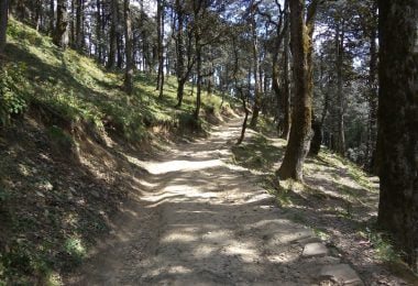 Road trip to Jibhi, The Great Himalayan National Park. A photo blog - Justwravel