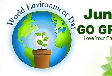 Celebrating World Environment Day - Justwravel