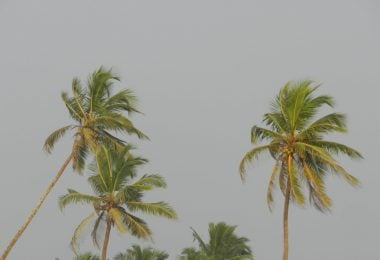 Offbeat Things to Do in Goa - Justwravel
