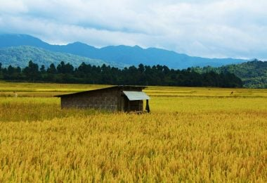 Talle Valley – The hidden beauty of Arunachal Pradesh - Justwravel