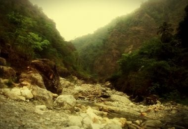 The serendipitous nature trail of Buxa Tiger Reserve - Justwravel