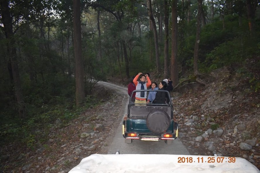 At Jungle Safari Corbett