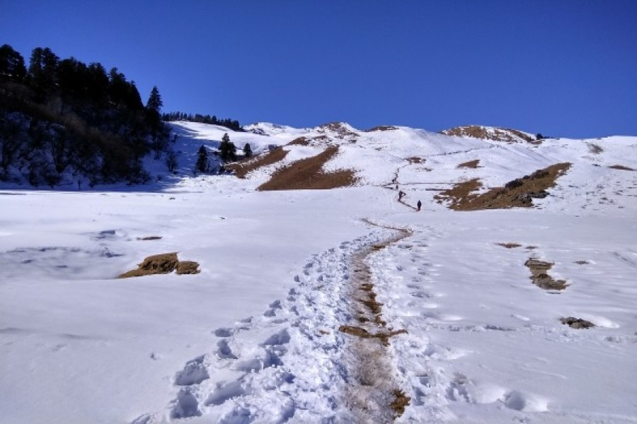 Path to Summit