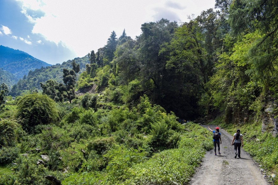 Trail to Parashar Lake