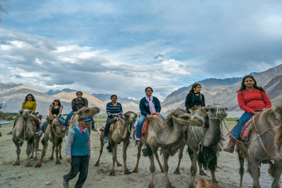Camel Ride at Nubra Valley